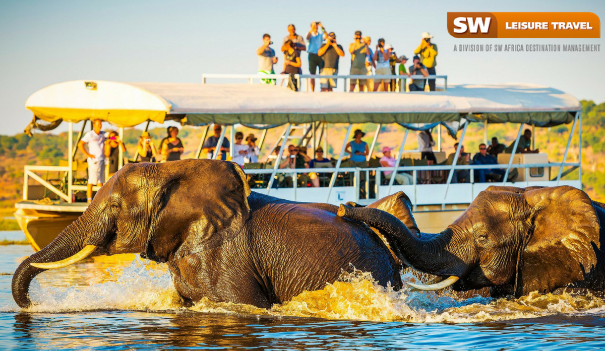 5 Things You Will Remember on Your Safari Experience in Africa
