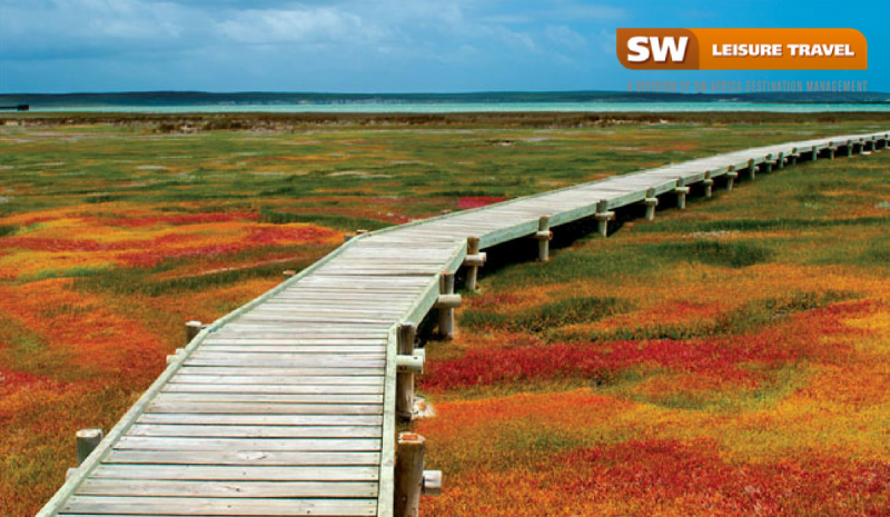 Top 5 must-visit spots during the Flower Seasons in South Africa.