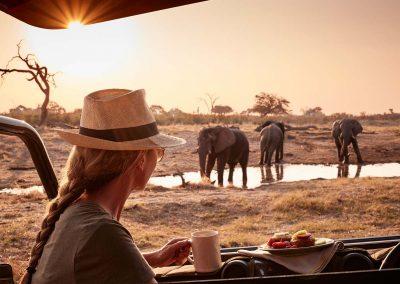 Livingstone (Zambia), Chobe & Okavango